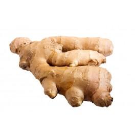 Ginger (Zenzero)